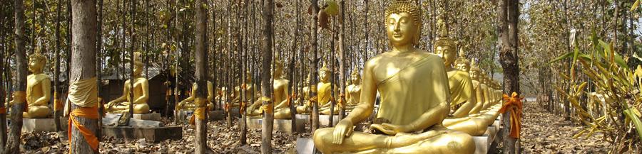 Таиланд бизнес-лагерь