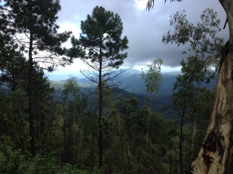 Природа Чианг май